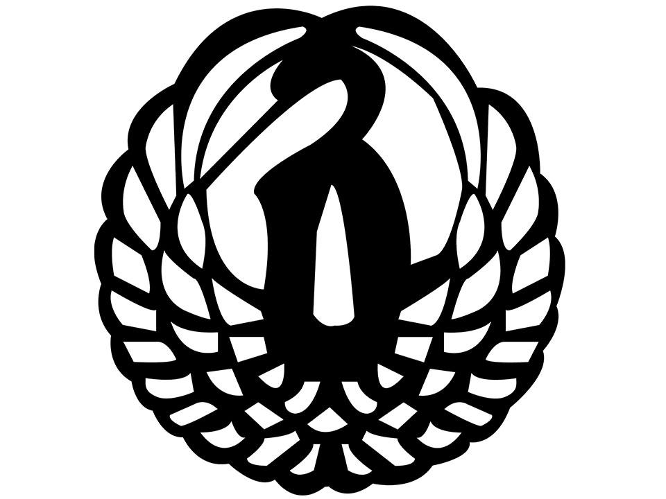 Iaido Coaching Guide
